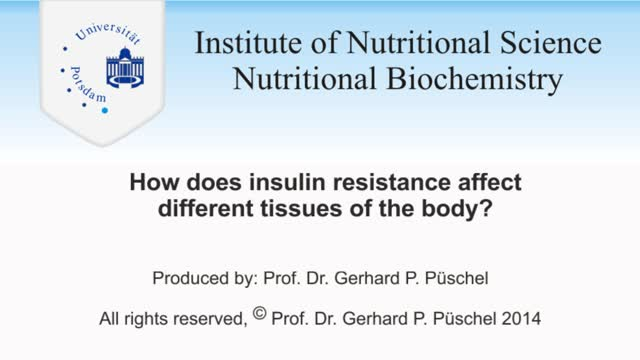 How Insulin Resistance Affects Different Organs, Level 1